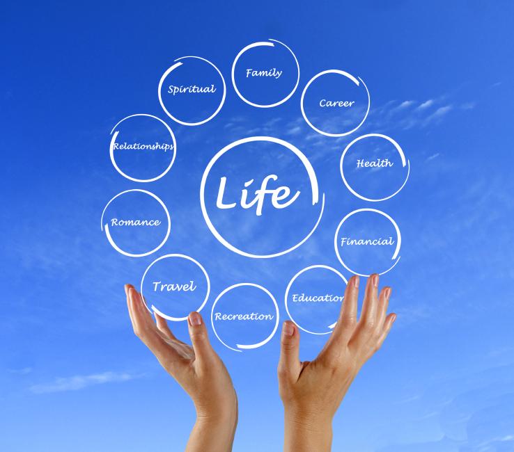 Diagram of life